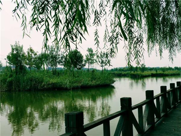 东营区城南风景