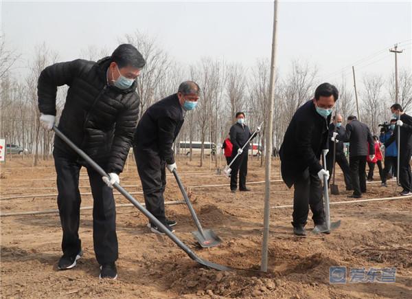 东营市开展春季义务植树活动 为东营大地再添新绿